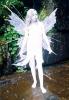 fairy_fs