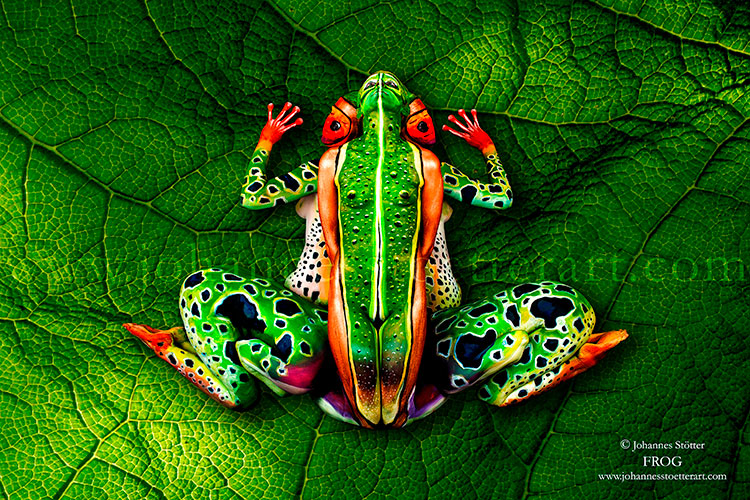 Frog Bodypainting