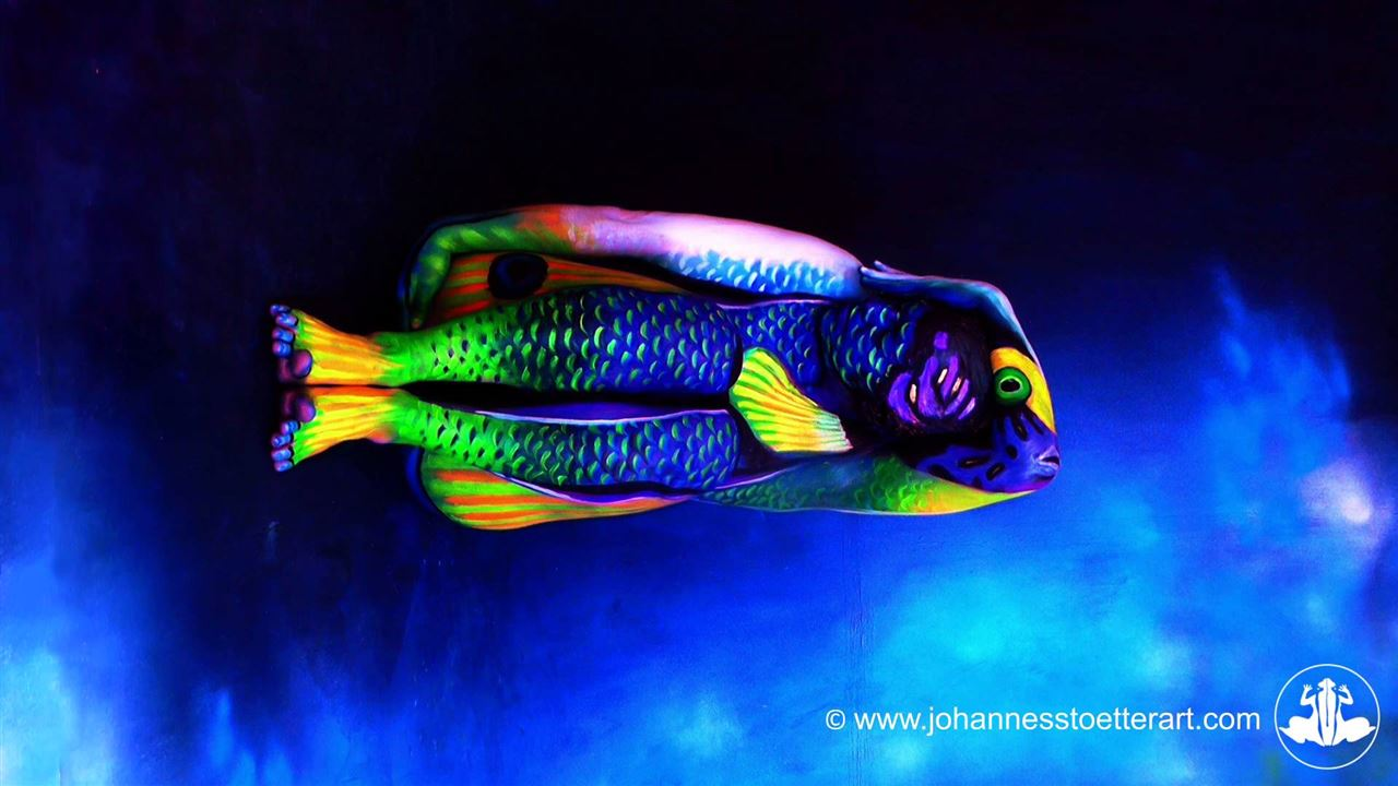 Angelfish Art