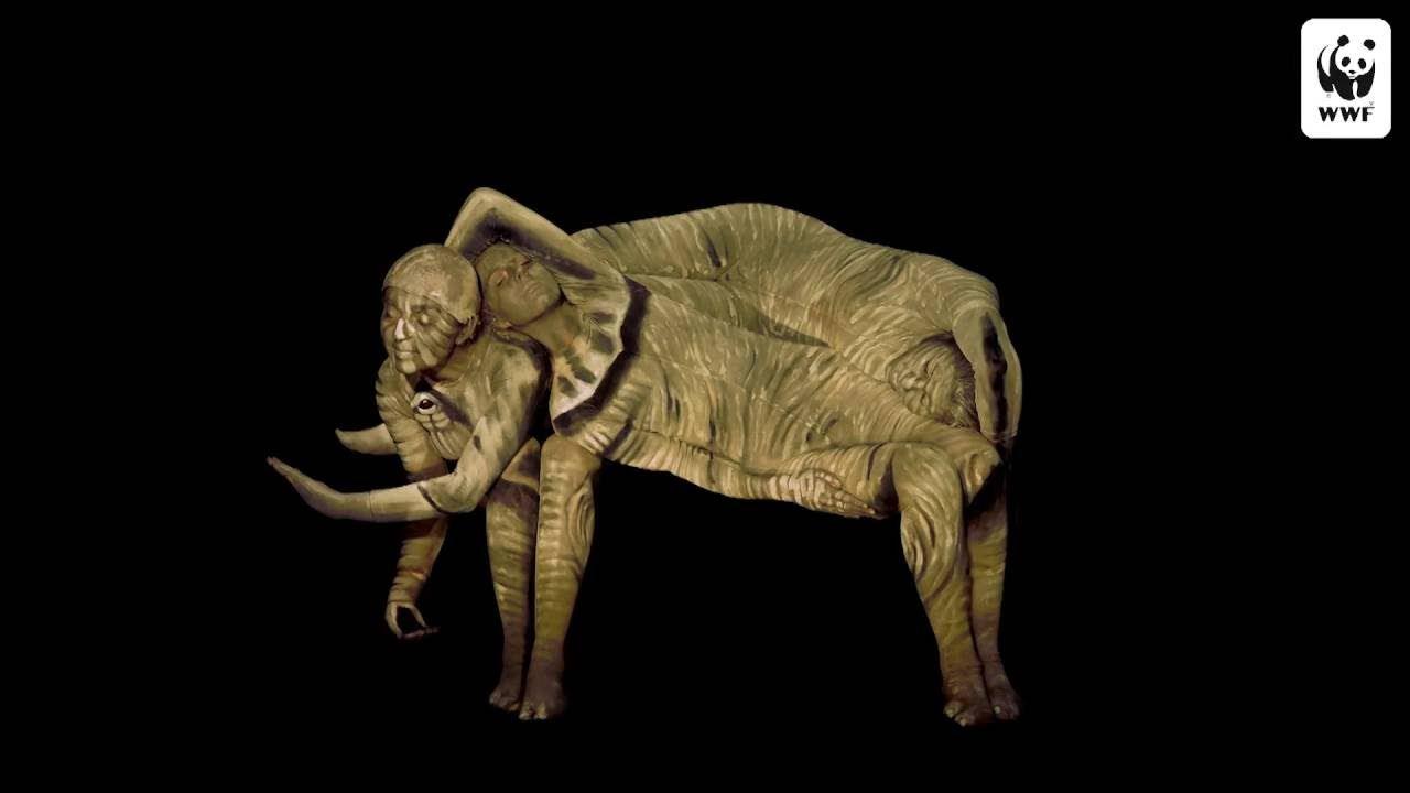 WWF Bodypaint